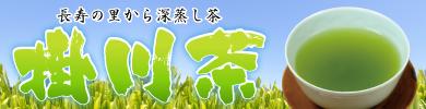本店画像バナー-掛川.jpg